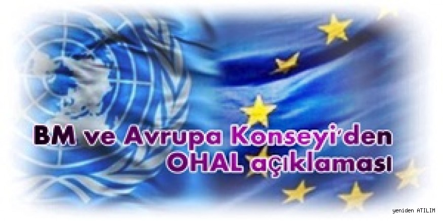 Avrupa Konseyi ve BM'den OHAL açıklaması