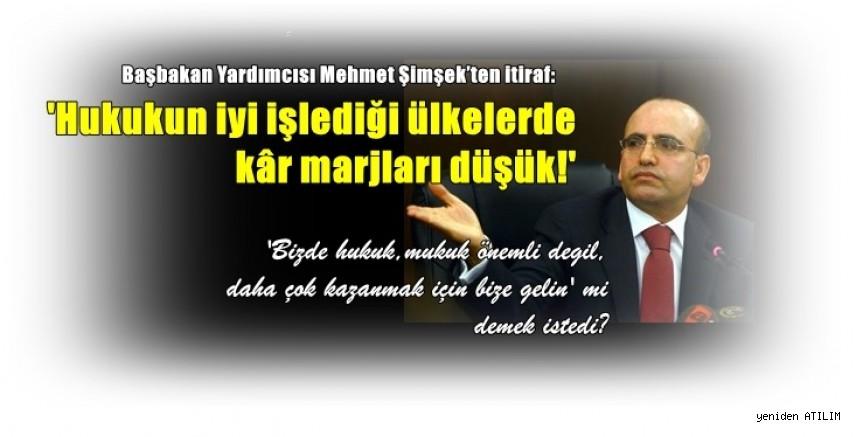 Başbakan Yardımcısı Mehmet Şimşek'ten itiraf:  Hukukun iyi işlediği ülkelerde kâr marjları düşük!