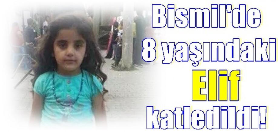Bismil'de 8 yaşındaki Elif hayatını kaybetti