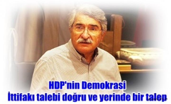 Fikri Sağlar:  HDP'nin Demokrasi İttifakı talebi doğru ve yerinde bir talep