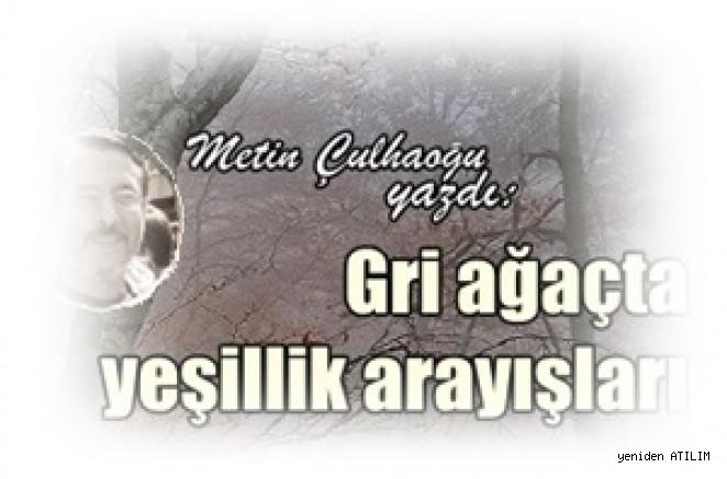 Gri ağaçta yeşillik arayışları / Metin Çulhaoğlu