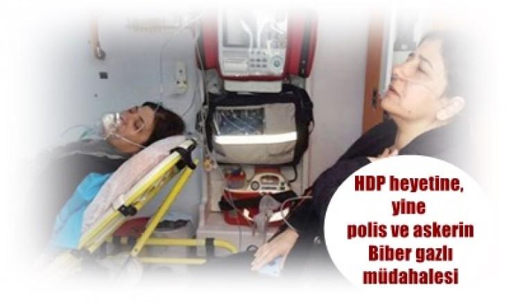 HDP heyetine, yine polis ve askerin Biber gazlı müdahalesi