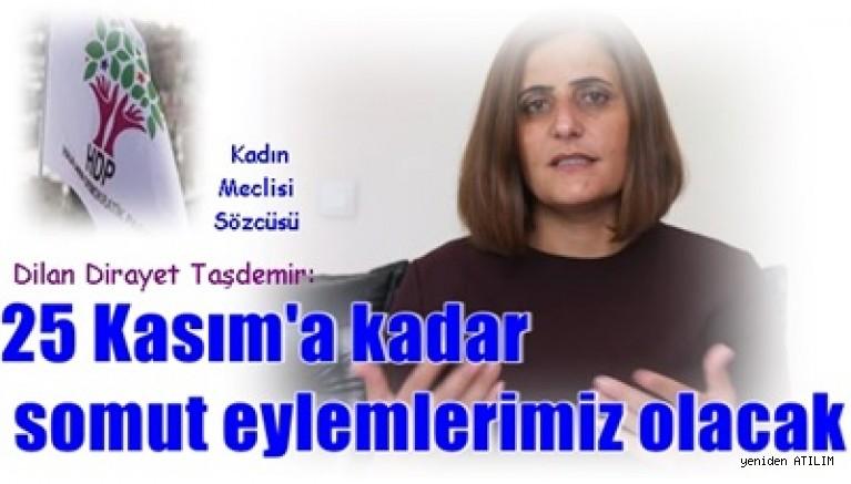 Kadın Meclisi Sözcüsü Dilan Dirayet Taşdemir:25 Kasım'a kadar somut eylemlerimiz olacak