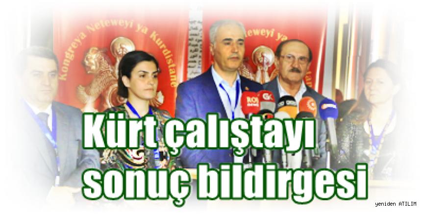 Kürt çalıştayı sonuç bildirgesi:  Diplomasiye hız verilmeli