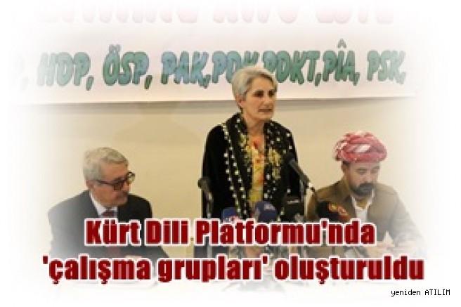 Kürt Dili Platformu'ndan