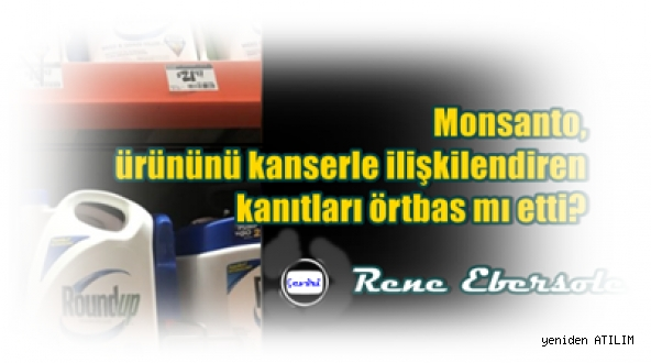 Monsanto, ürününü kanserle ilişkilendiren kanıtları örtbas mı etti?/  Rene Ebersole