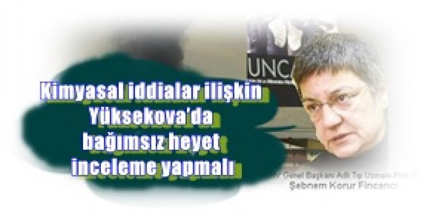 Prof. Dr. Şebnem Korur Fincancı:  Kimyasal iddialara ilişkin Yüksekova'da bağımsız heyet inceleme yapmalı